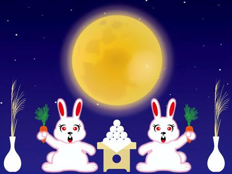 Tsukimi和一只兔子