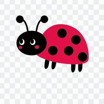 수줍어하는 핑크 무당 벌레