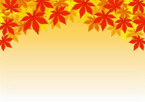 秋天的樹葉_背景晚上的天空
