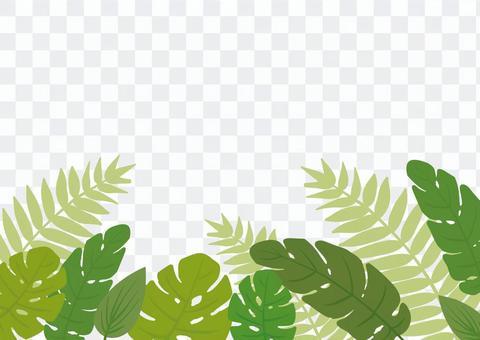 Tropical plant frame