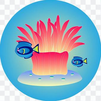 Sea anemone & blue tang icon