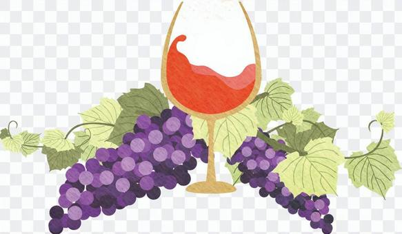 紅葡萄酒和葡萄