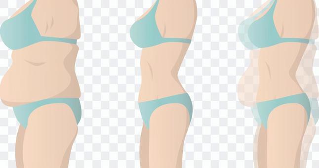 肥胖體型和理想體型(水平)