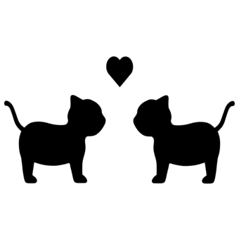 貓情侶剪影