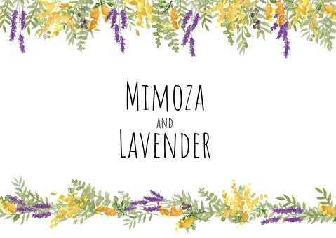 含羞草和薰衣草水彩畫框