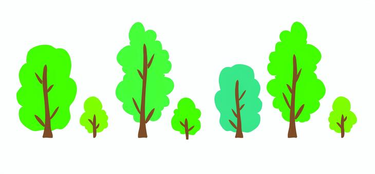 Material trees (street tree · park) summer