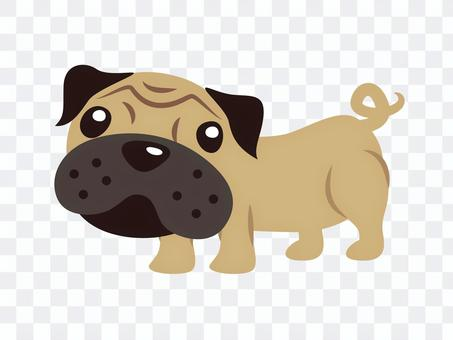 帕格(狗)