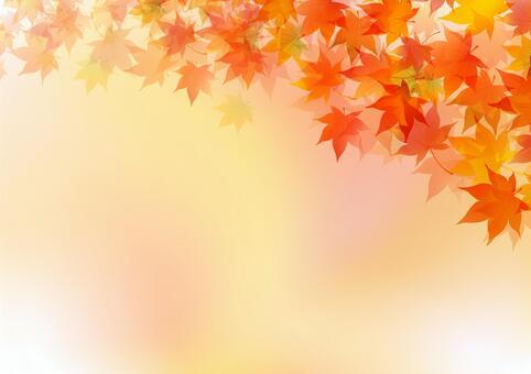 秋天的楓樹框架4