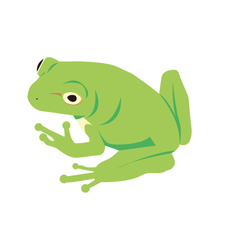 Grow into a frog
