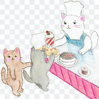 Cake shop cat