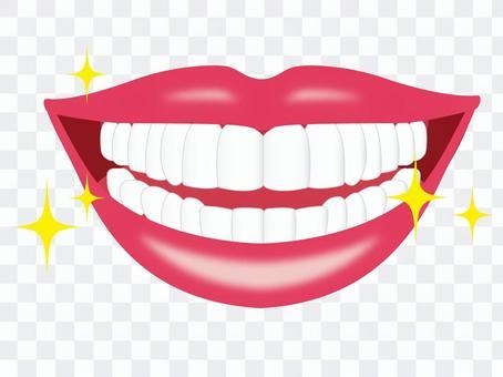 一個美麗的牙齒的嘴巴