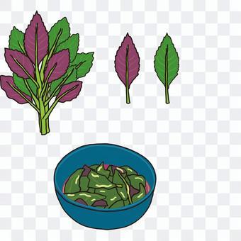 Kintoki grass leaf soaked