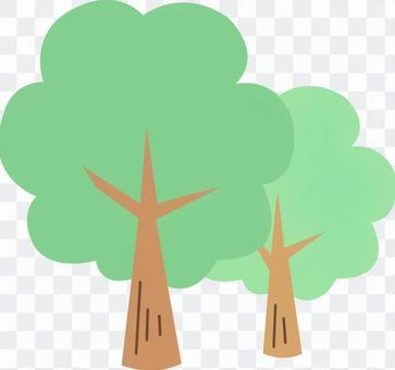【植物】樹