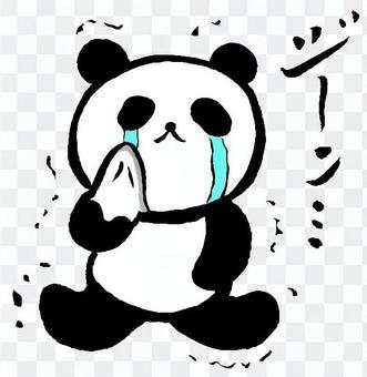 印象深刻的熊貓1