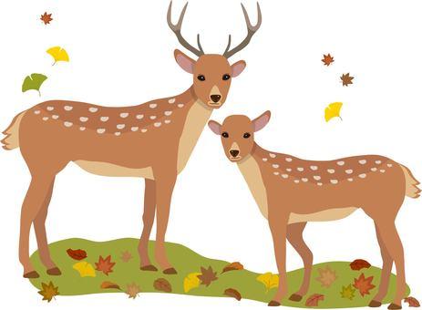 Deer autumn background