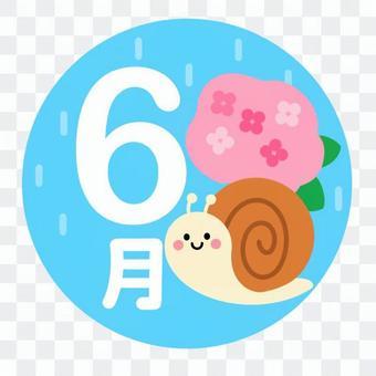 六月(蝸牛,繡球,雨)