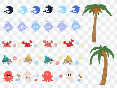 Summer ☆ Sea creatures
