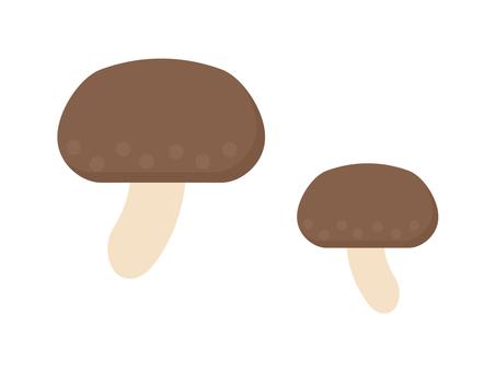 Simple and cute shiitake mushroom illustration