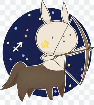 Constellation Usagi 11