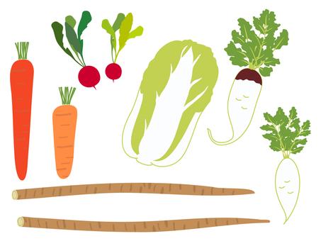 冬菜 胡蘿蔔、大白菜、牛蒡、蘿蔔