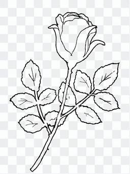バラ(線画)