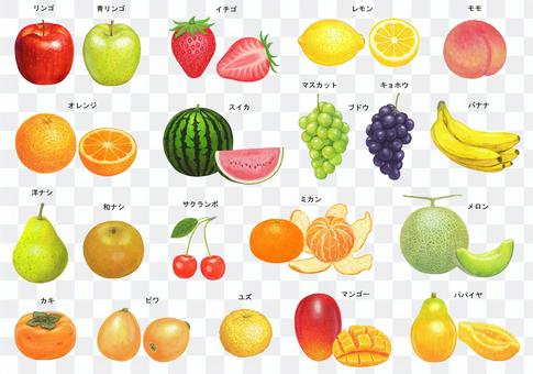 Fruit illustration set with name