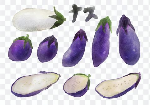 水彩_夏季蔬菜_茄子