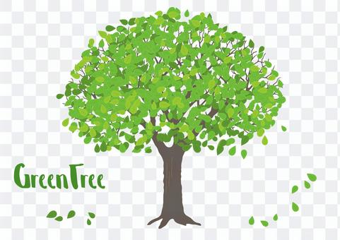 신록의 나무 그림 하나