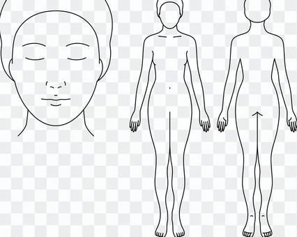 醫療記錄的女性身體圖畫
