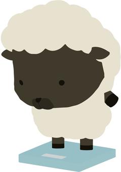 Scale_sheep_black