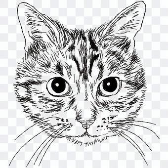 キジトラ猫の顔/白黒手描きイラスト