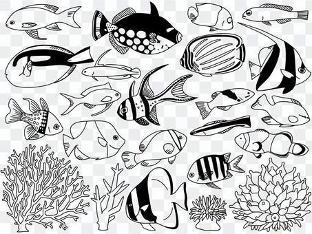 イラスト006 魚とサンゴ