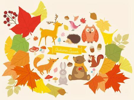 秋天的森林的例證匯集(8)