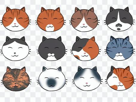 Assorted 12 patterns of cats