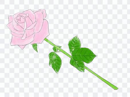 一朵玫瑰粉01