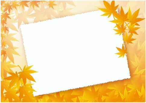 秋天的樹葉背景板