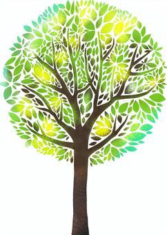 神奇的樹。