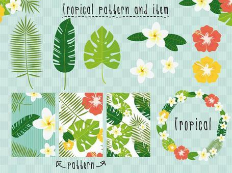 植物·热带图案/框架