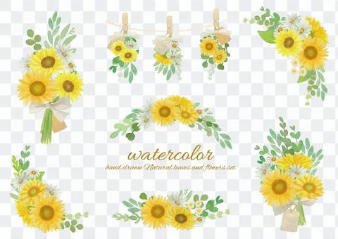 水彩向日葵和瑪格麗特花束