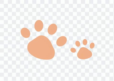 Paw ☆ Dogs, cats, felines