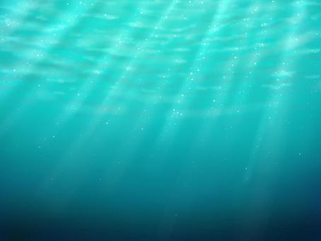 In the tropical ocean