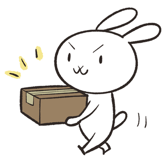 Rabbit carrying a cardboard box