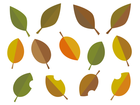 Autumn leaf illustration 02