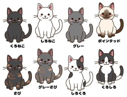 各種毛色的貓