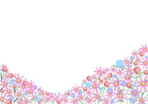 盛開在宇宙中的扁豆花田