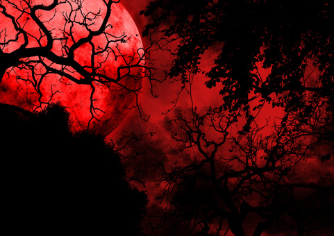 Full moon seen from the eerie red forest
