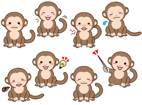 Monkey pose collection