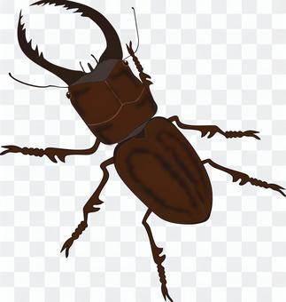 昆蟲(鍬蟲)