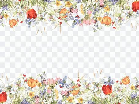 花框架406  - 草甸花在春天