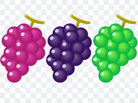 ぶどう 3種